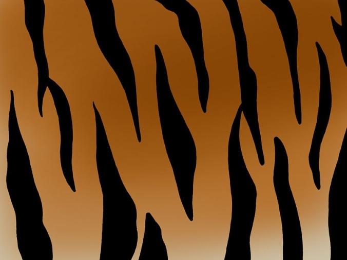 tiger_print_-_800x600_mi6